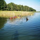 VII Międzynarodowe Mistrzostwa Polski w Łowiectwie Podwodnym - jesień 2021_136